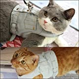 Cat-Jeans-Jacket-Harness-Vest-with-Matching-Lead-Leash-Set