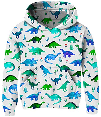 Kids Sweater for Toddlers Girl 3t 4t 5t 6t Green Dinosaur Cute Blue White Hoodies Pullover Sweatshirt 4-6Y Toddler Little Boy's Cool Novelty Animal Graphics Long Sleeve Spring Home Casual Tops Outfits -