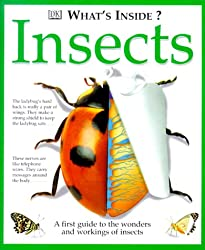 Insects (What's Inside? (DK Paperback))