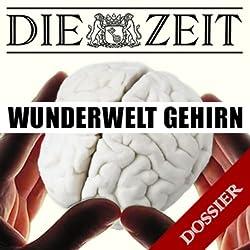 Wunderwelt Gehirn (DIE ZEIT)