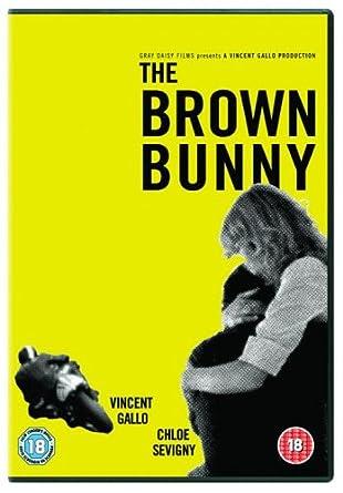 The Brown Bunny [DVD] (2003): Amazon co uk: Vincent Gallo, Chloe