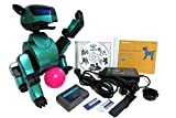 Sony Aibo Robot Pet ERS-210 Metallic Green with Dog's LIFE & Aibo Disco Software