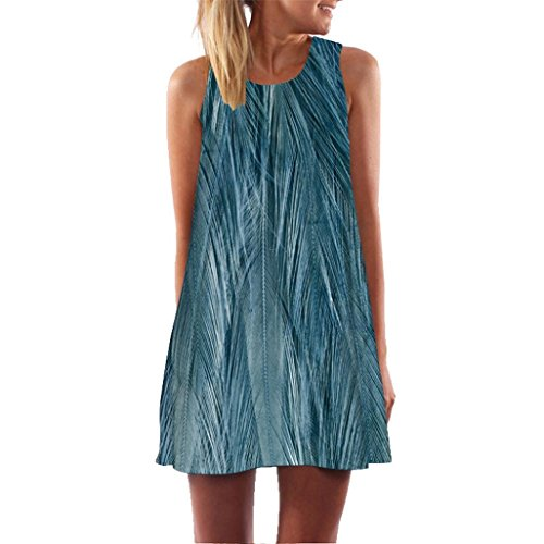 Loose Summer Vintage Sleeveless 3D Floral Print Dress for Women Bohe Tank Short Mini Dress (Blue, X-Large)