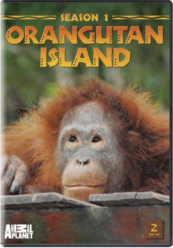 Orangutan Island - Season 1