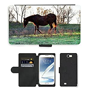Hot Style Cell Phone Card Slot PU Leather Wallet Case // M00111806 Horse Brown Animal Mammal Farm // Samsung Galaxy Note 2 II N7100