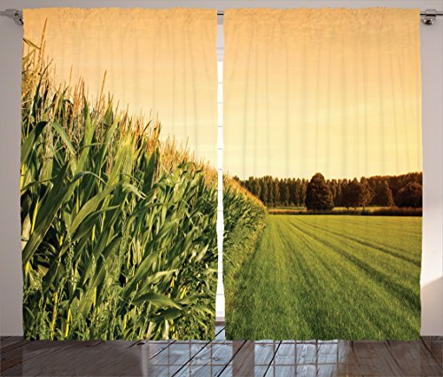 Ambesonne Farmhouse Decor Collection, Cornfield Wide Farmland near Forest Foliage Rural Harvesting Season Landscape Scenics, Living Room Bedroom Curtain 2 Panels Set, 108 X 84 Inches, Green