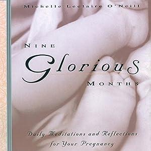 Nine Glorious Months Audiobook