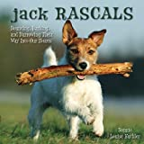 Jack Rascals: Bouncing, Barking, and Burrowing Their Way Into Our Hearts