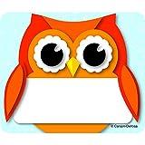 CARSON DELLOSA COLORFUL OWL NAME TAGS (Set of 24)