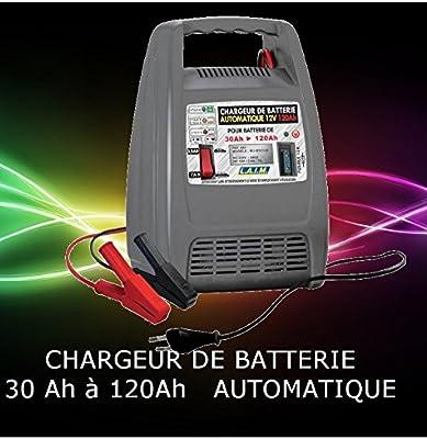 Cargador de batería automático de 120 Ah: Amazon.es: Coche y ...