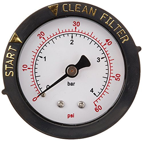Pentair 190059 Rear Mount Pressure Gauge Replacement Pool/Spa Valve and Filter (Pentair Nautilus Parts)