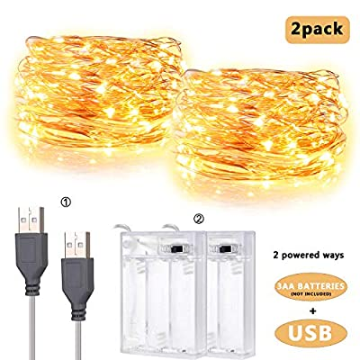 IDESION 2 Pack 20 Feet 60 Led Fairy Lights Waterproof Copper Wire Twinkle String Lights with 2 Mode Charging Type USB Powered/Battery Operated for Bedroom Indoor Holiday Decoration