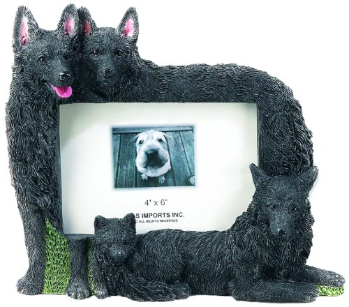 E&S Pets 35257-104 Large Dog Frames