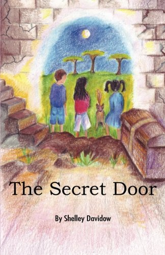 Amazon.com: The Secret Door (9781931061438): Shelley Davidow: Books