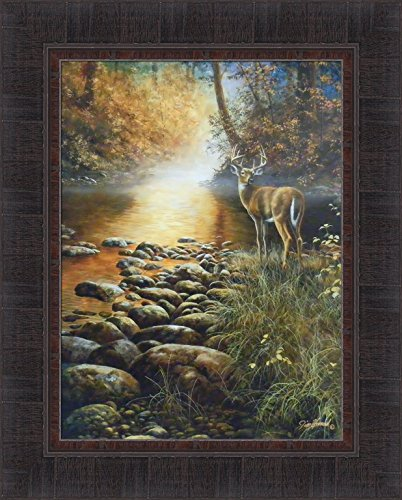 Beside Still Waters by Jim Hansel 17x21 Whitetail Deer Buck River Rocks Sunshine Framed Art Print Picture