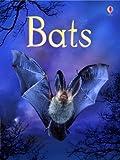 Bats (Usborne Beginners)