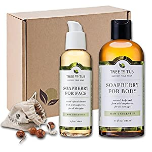 WINTER ONLY—Organic Face Wash & Body Wash Combo w/ Real Soapberries—Best Value Bath Set in Beautiful, Recyclable Gift Box, Naturally Nourish Dry, Sensitive Skin, Limited Supply, Unscented—Tree To Tub