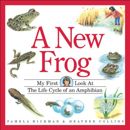 A New Frog (My First Look at)