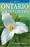 Ontario Wildflowers: 101 Wayside Flowers