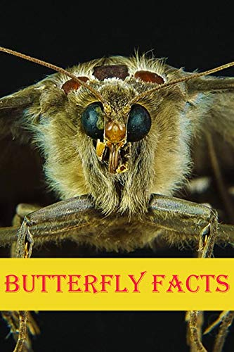 Butterfly Facts: Photobook of Butterfly Facts with real images and Facts that you should know that's so amazing (Fun Facts 18)