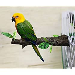 Mrli Pet Simulation Branch Bird Perches Stand Birds Cage Supplies Station Perch Small Size Parrot Cockatiels Lovebirds Small Parakeets Parrotlets Material Stainless Steel Resin Length 5.9inch