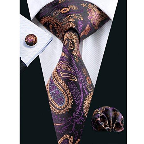 Hi-Tie New Classic Purple Paisley Neckties Woven Silk (Silk Paisley Tie)