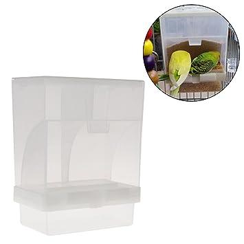 Girasool - Comedero automático para pájaros, Accesorios de Jaula para periquitos, contenedor de Alimentos, Loro Integrado y alimentador automático para ...