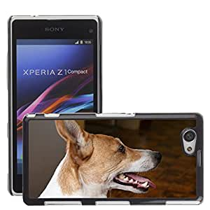 Etui Housse Coque de Protection Cover Rigide pour // M00134659 Perro Perfil Jack Russell // Sony Xperia Z1 Compact D5503