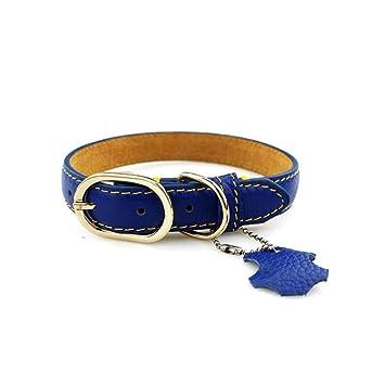 Animal Perro Collar Leash Collar De Perro De Cuero Genuino ...