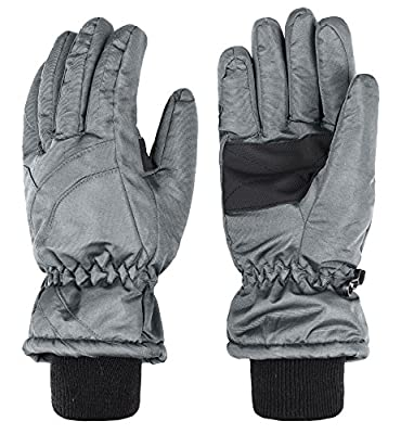Wantdo Men's Waterproof Insulated Winter Warm Ski Snowboarding Gloves