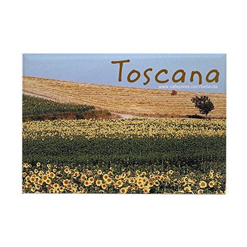 tuscany dishwasher magnet - 5