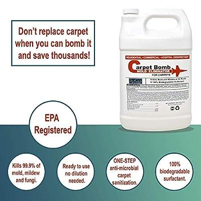 Biocide Mold Fogger