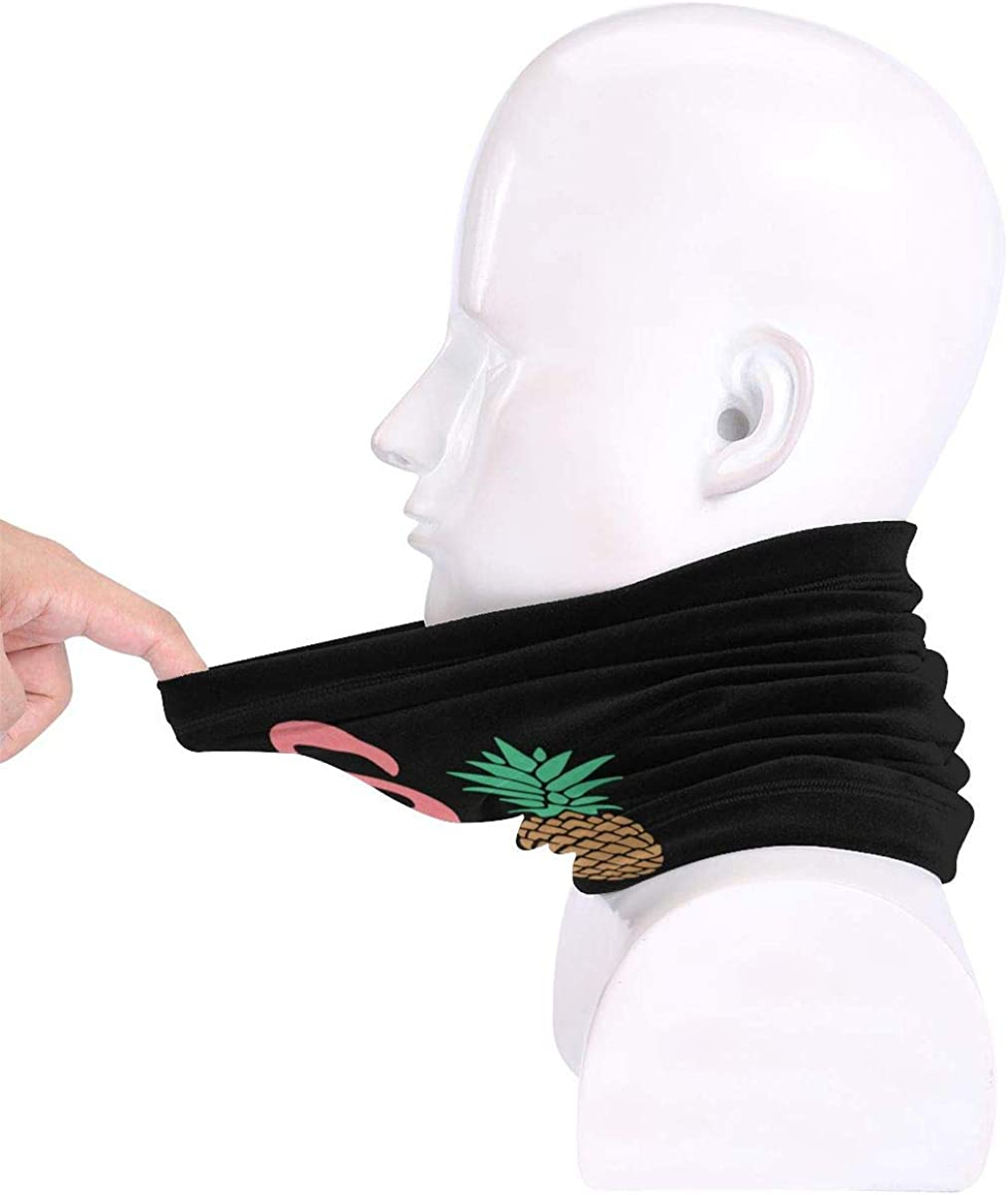 Flamigo And Pineapple Men /& Women Face Mask Windproof Neck Warmer Winter Neck Gaiter For Snowmobile Cycling