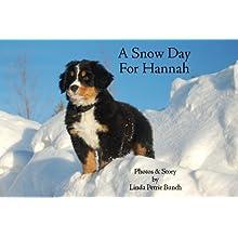 A Snow Day for Hannah (Mountain Dog Books)