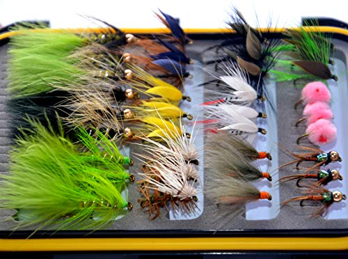 (36Pieces Dry Fly, Wet Fly and Nymph Fly Lure Assotment + Fly Box for Trout Fly Fishing Flies)