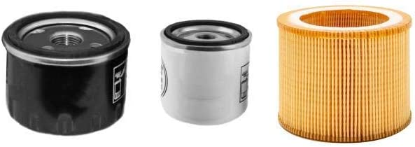Etesia Wasser 100 D Filter Service Set Mit Lombardini Motor Luft Öl Kraftstoff Filter Auto