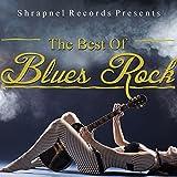 Shrapnel Records Presents: The Best of Blues Rock
