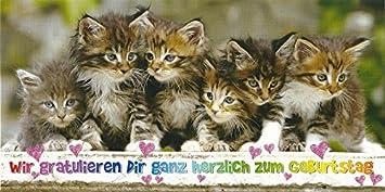 Xxl Postkarte Katzen Gratulieren Zum Geburtstag Amazon De