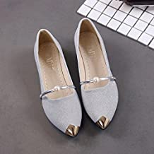 HOT Sale ,AIMTOPPY Women Pointed Toe Ladise Shoes Casual Low Heel Flat Shoes (US:8.5, Silver)