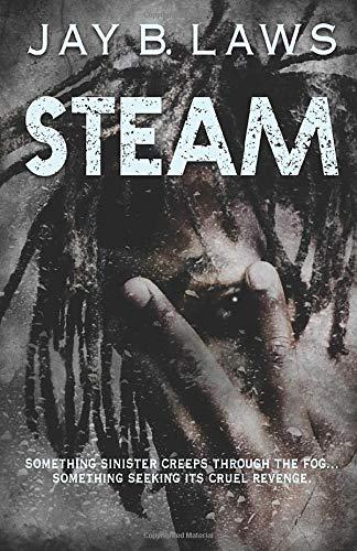 Amazon.com: Steam (9781951092009): Jay B. Laws, Hal Bodner ...