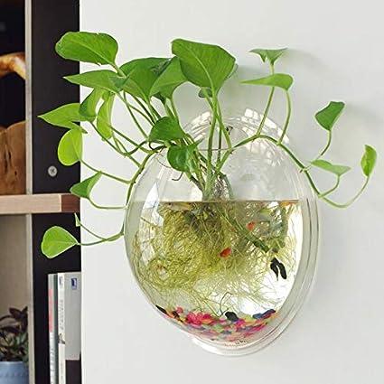 Placehap - Jarrón hidropónico Redondo de Pared para Acuario, decoración del hogar, acuarios,
