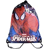 Sambro BAG-831-1 Spiderman Shoe Bag