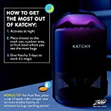 KATCHY Indoor Insect Trap: Bug, Fruit