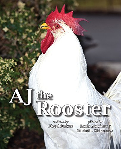 AJ the Rooster