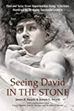 Seeing David in the Stone