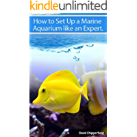 How to Set Up A Marine Aquarium Like an Expert. (Aquarium and Turtle Mastery Book 1)
