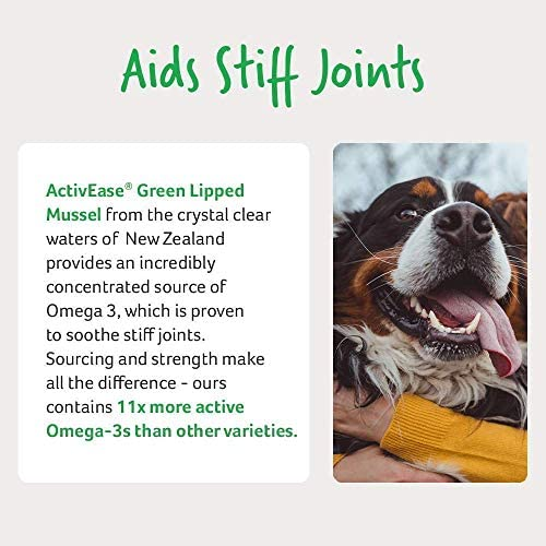 Lintbells YuMOVE Dog Essential Hip and Joint Supplement Chewable Tablets for Stiff Dogs - Contains Glucosamine, Green Lipped Mussel - Natural Relief from Hip Ache, Stiff Joint