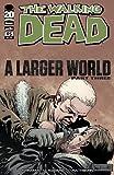 Walking Dead #95