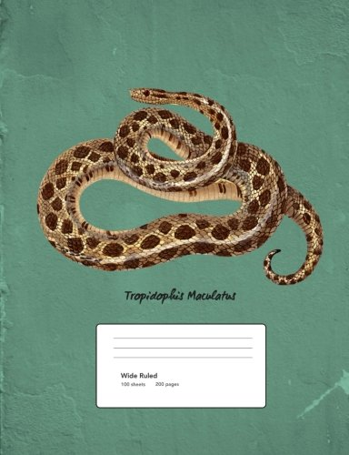 - Snake Boa Constrictor Composition Book Wide Ruled: Notebook 200 pages 100 sheets