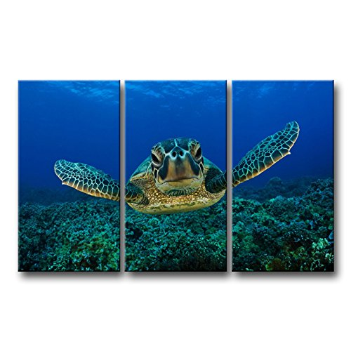 3 Piece Blue Wall Art Painting Turtle Looking Swim in The Sea Prints On Canvas The Picture Animal Pictures Oil for Home Modern Decoration Print Decor - Hawaii Art Paintings